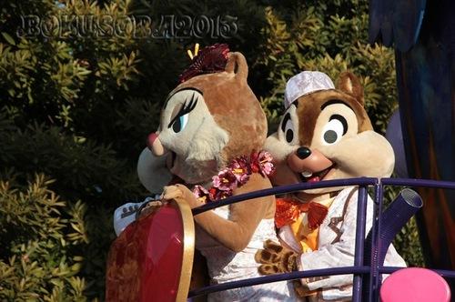 jubilation2011-003.JPG